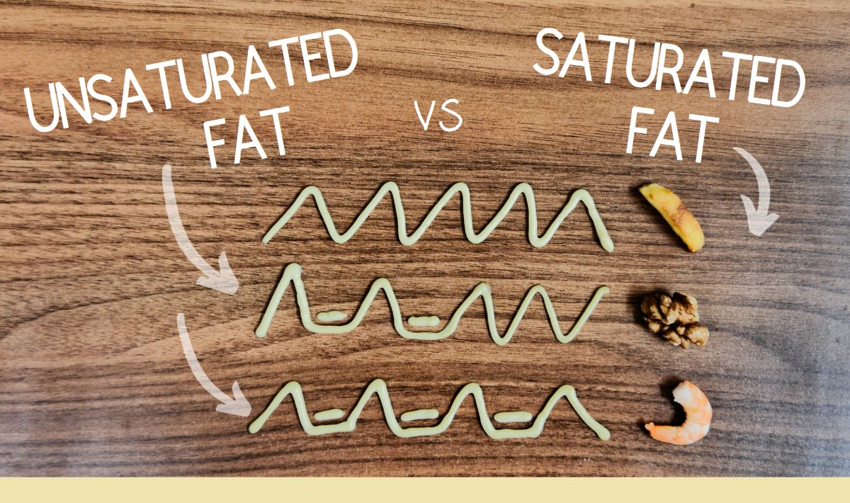 Examples of saturated and unsaturated fats
